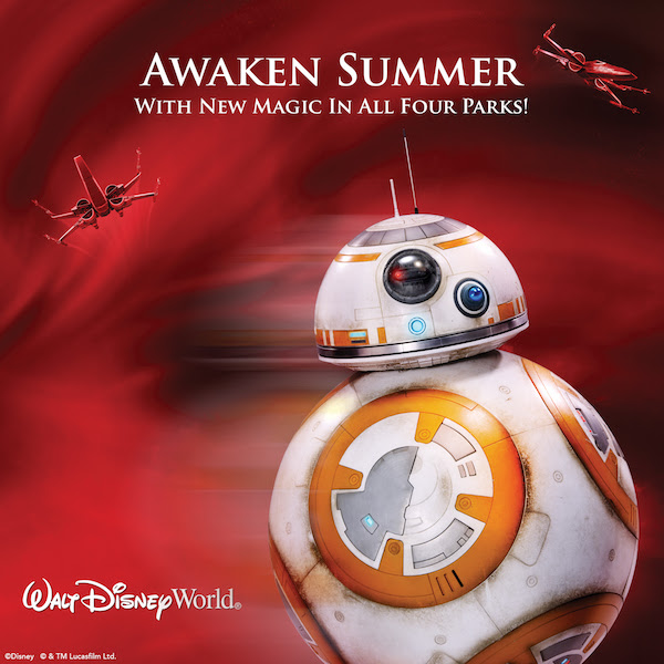 Disney World Summer Discount 2016