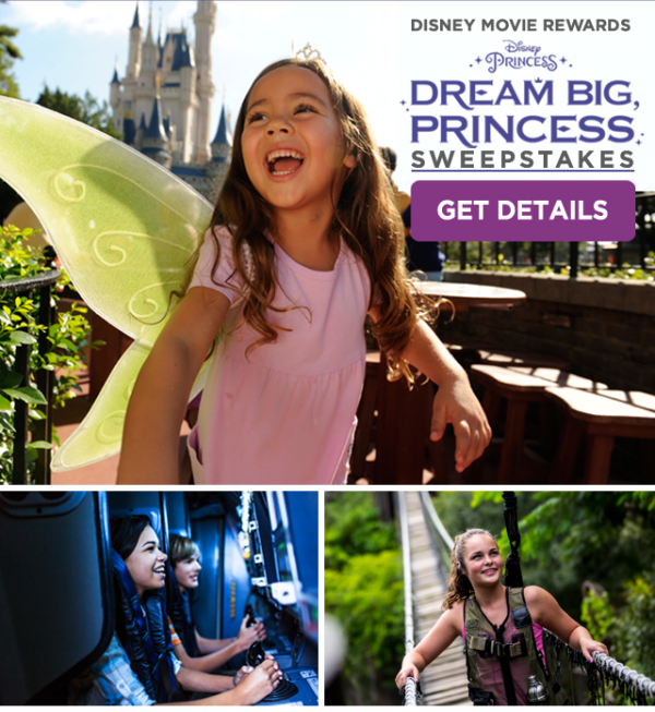 Dream Big Princess Sweepstakes