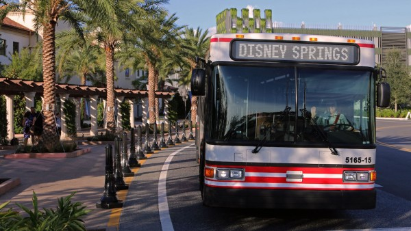 Buses to Disney Springs